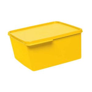 Basic Line Amarela 2.5L